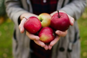 food education an apple a day